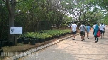 Layaknya tempat wisata, dia juga punya taman, bale bengong, dan beberapa fasilitas pendukung lainnya.