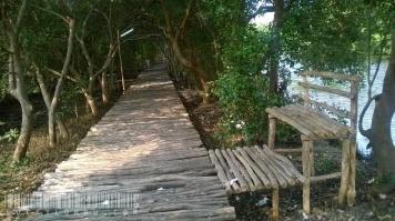 Ini jalur kayu di yang memanjang di antara danau. Jalurnya yang dilindungi pepohonan, bikin udara lumayan teduh. Bisalah buat jalan sambil berpegang tangan bersama pasangan. (Cek juga ke http://instagram.com/p/t2qlIhDjkI/?modal=true)